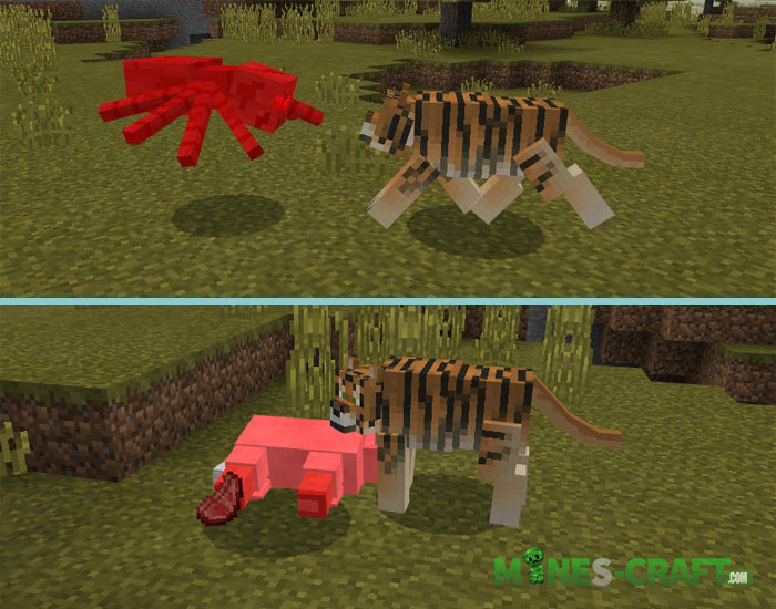 Tiger Addon [Minecraft PE 1.1.0.4+]