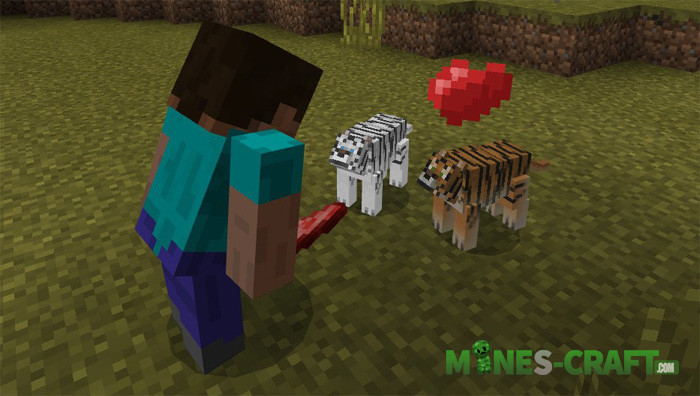 Tiger Addon [Minecraft PE ]