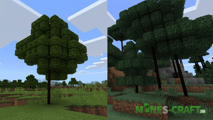 Young Trees Addon MCPE
