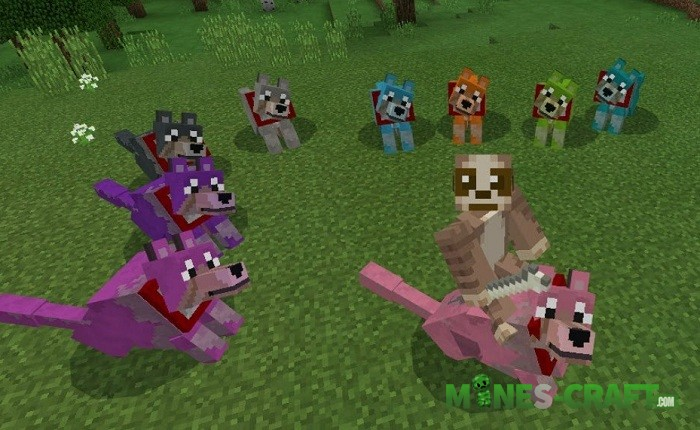 Colorful Wolves Add-on MCPE