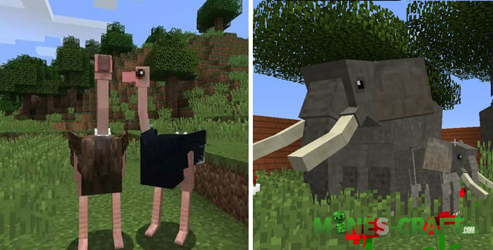Animals Plus Addon MCPE