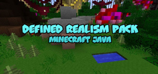 Defined Realism Pack Minecraft
