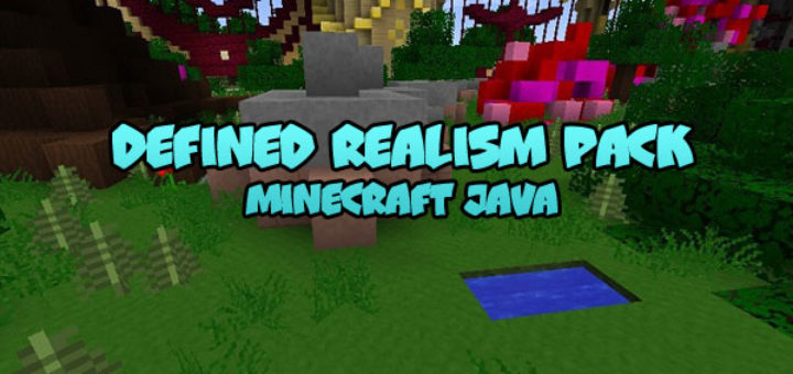 Defined Realism Pack Minecraft