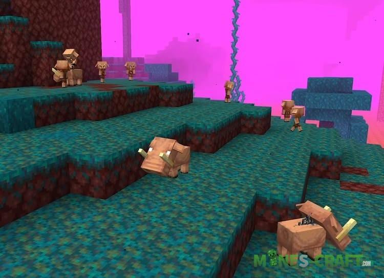 Minecraft 1.16 Biomes